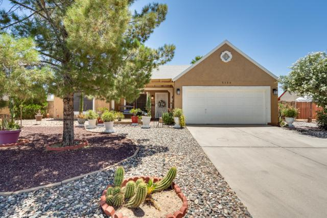 7133 W Cholla Street, Peoria, AZ 85345 (MLS #5935190) :: Revelation Real Estate