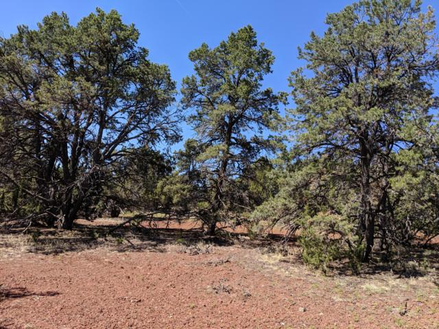 lot 38 Mountain Pine Road, Vernon, AZ 85940 (MLS #5935260) :: The Newman Team