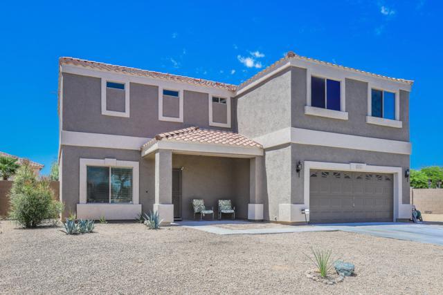 12231 W Dreyfus Drive, El Mirage, AZ 85335 (MLS #5935275) :: Occasio Realty