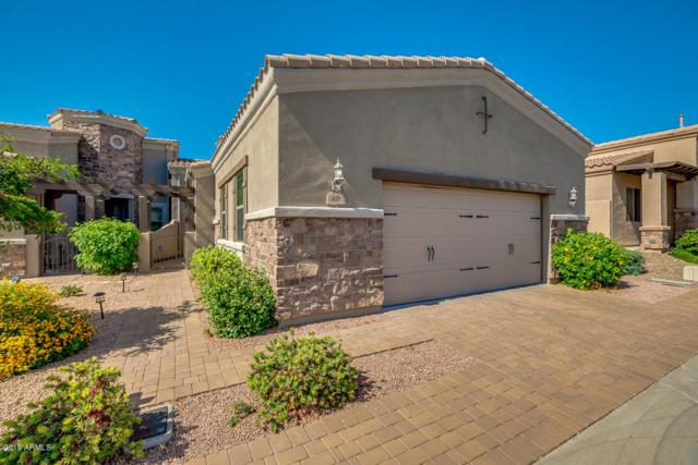 6202 E Mckellips Road #217, Mesa, AZ 85215 (MLS #5935313) :: The Laughton Team