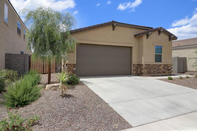 21367 W Holly Street, Buckeye, AZ 85396 (MLS #5935321) :: The Kenny Klaus Team