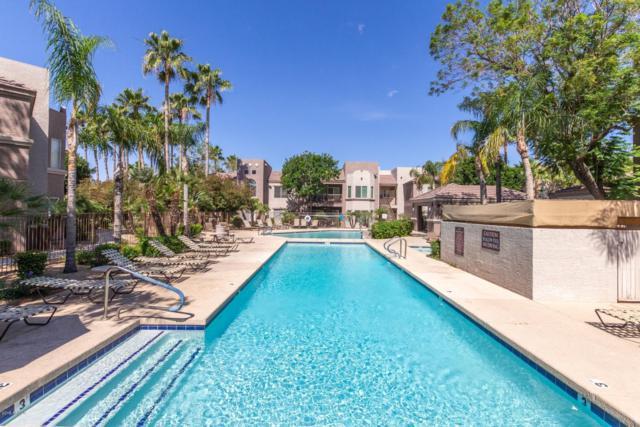 17017 N 12TH Street #2023, Phoenix, AZ 85022 (MLS #5935331) :: Homehelper Consultants