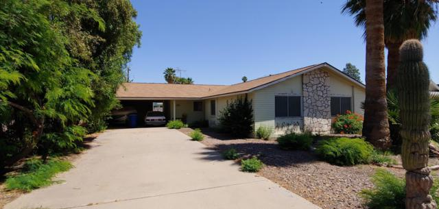 1236 E La Jolla Drive, Tempe, AZ 85282 (MLS #5935366) :: Revelation Real Estate