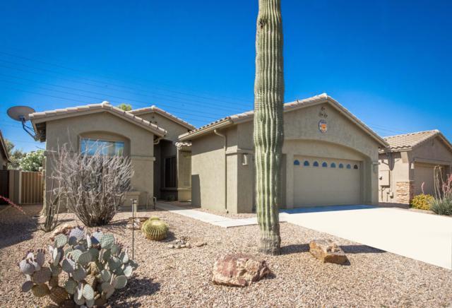 9831 E Stoney Vista Drive, Sun Lakes, AZ 85248 (MLS #5935411) :: The Kenny Klaus Team