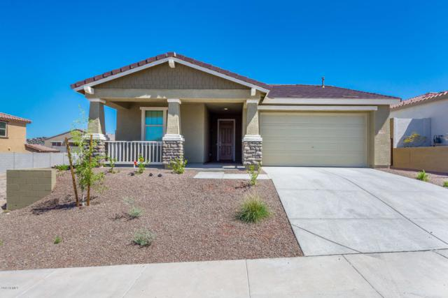 10648 W Eucalyptus Road, Peoria, AZ 85383 (MLS #5935454) :: The Pete Dijkstra Team