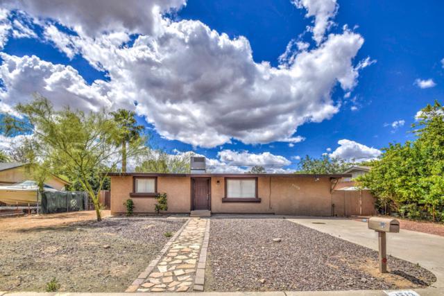 2513 E Anderson Drive, Phoenix, AZ 85032 (MLS #5935504) :: Conway Real Estate