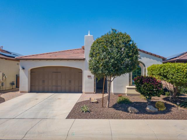 518 E Laddoos Avenue, San Tan Valley, AZ 85140 (MLS #5935532) :: CANAM Realty Group