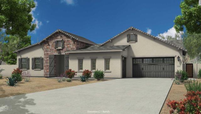 8430 W Williams Road, Peoria, AZ 85383 (MLS #5904905) :: The Kathem