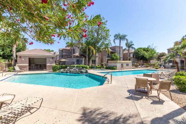 17017 N 12TH Street #1022, Phoenix, AZ 85022 (MLS #5935647) :: Phoenix Property Group