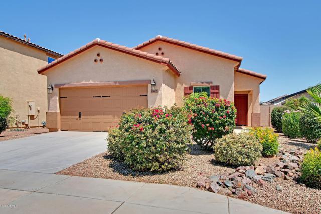 10802 W Saddlehorn Road, Peoria, AZ 85383 (MLS #5935667) :: The Pete Dijkstra Team