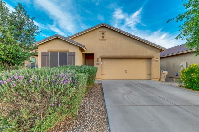 13025 E Marigold Lane, Florence, AZ 85132 (MLS #5935704) :: Revelation Real Estate