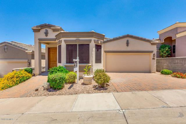12817 N 19TH Street, Phoenix, AZ 85022 (MLS #5935762) :: Revelation Real Estate
