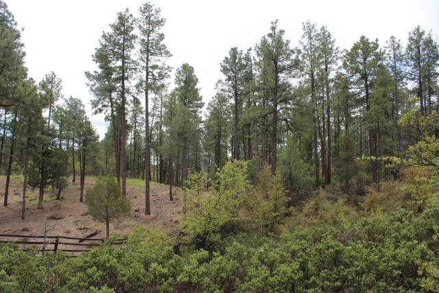 3109 E Game Trail, Payson, AZ 85541 (MLS #5935807) :: The Bill and Cindy Flowers Team