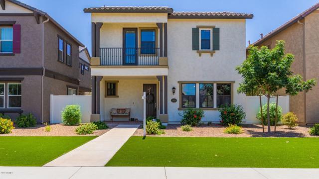 10423 E Natal Avenue, Mesa, AZ 85209 (MLS #5935937) :: Occasio Realty
