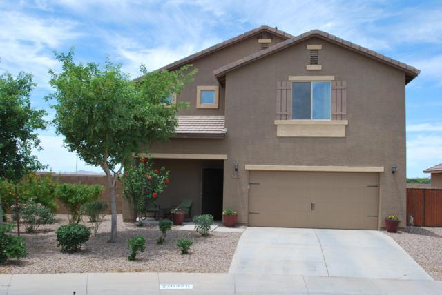 20326 N Mac Neil Street, Maricopa, AZ 85138 (MLS #5935949) :: Revelation Real Estate