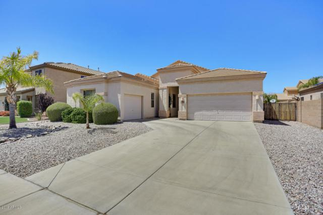 9436 W Salter Drive, Peoria, AZ 85382 (MLS #5935989) :: The Laughton Team