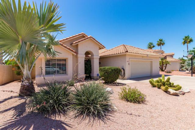 3125 E Cottonwood Lane, Phoenix, AZ 85048 (MLS #5936020) :: Revelation Real Estate