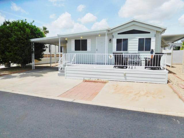 17200 W Bell Road #436, Surprise, AZ 85374 (MLS #5936028) :: Brett Tanner Home Selling Team