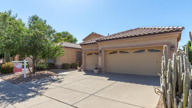 1796 W Canary Way, Chandler, AZ 85286 (MLS #5936047) :: Revelation Real Estate