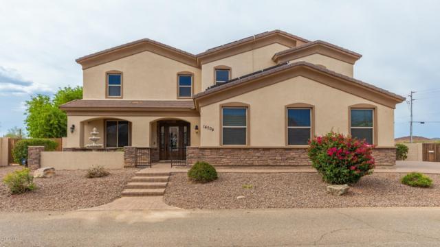 14704 W Black Hill Road, Surprise, AZ 85387 (MLS #5936081) :: Nate Martinez Team