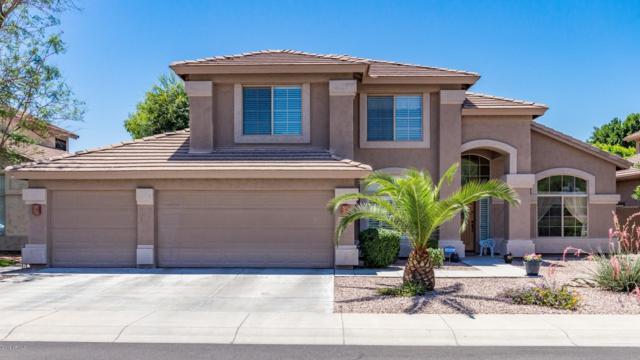 5101 E Michelle Drive, Scottsdale, AZ 85254 (MLS #5936180) :: Arizona 1 Real Estate Team