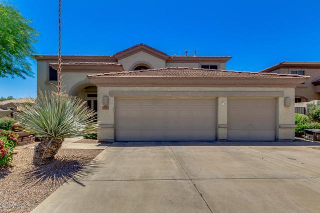 17650 N 52ND Place, Scottsdale, AZ 85254 (MLS #5936181) :: Arizona 1 Real Estate Team