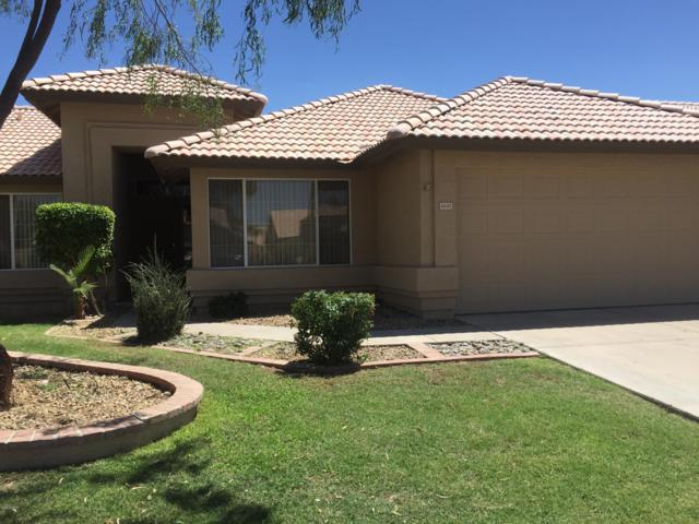 4681 W Geronimo Street, Chandler, AZ 85226 (MLS #5936245) :: Revelation Real Estate