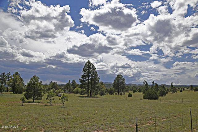 4684 Limestone Road, Show Low, AZ 85901 (MLS #5936306) :: Brett Tanner Home Selling Team