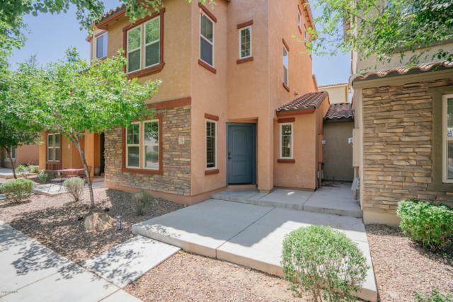 7755 W Pipestone Place, Phoenix, AZ 85035 (MLS #5936408) :: Revelation Real Estate