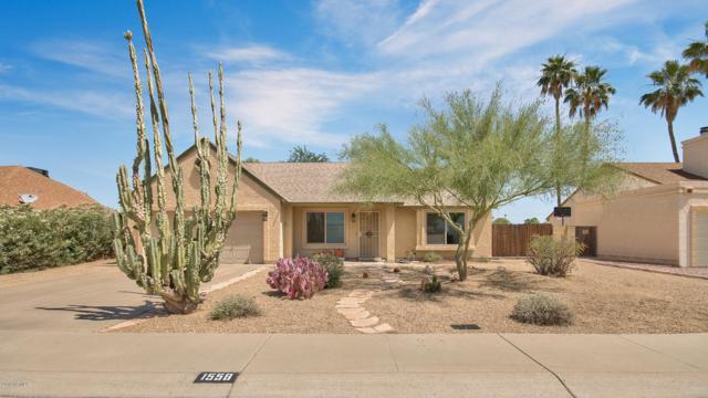 1558 E Stephens Drive, Tempe, AZ 85283 (MLS #5936422) :: Revelation Real Estate