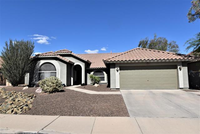 28825 N 45TH Street, Cave Creek, AZ 85331 (MLS #5936426) :: The Laughton Team