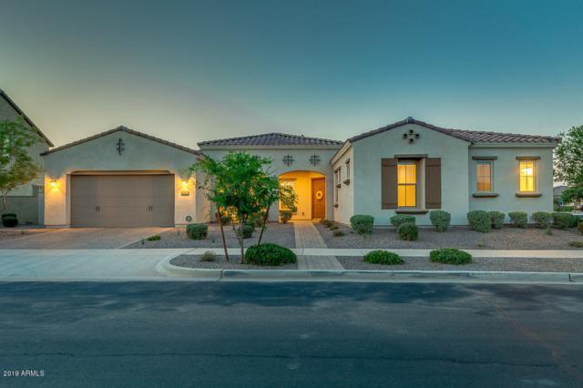 10646 E Sanger Avenue, Mesa, AZ 85212 (MLS #5936439) :: Revelation Real Estate