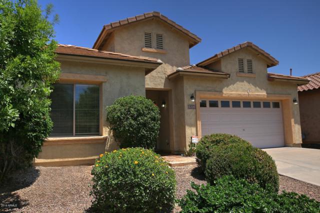 5226 W Buckskin Trail, Phoenix, AZ 85083 (MLS #5936503) :: REMAX Professionals