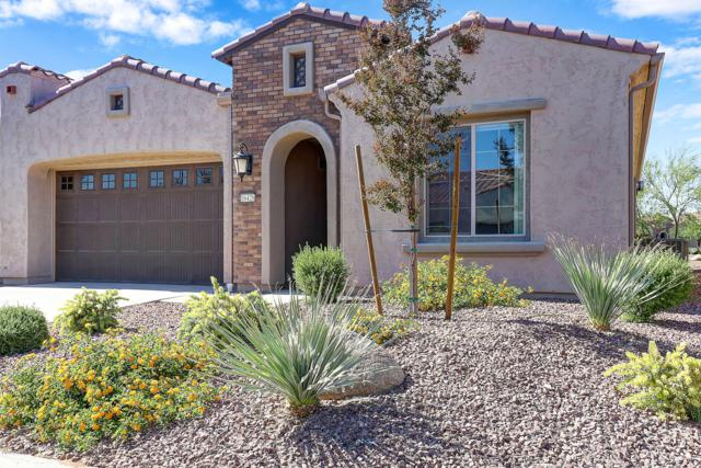 16426 W Piccadilly Road, Goodyear, AZ 85395 (MLS #5936525) :: Kortright Group - West USA Realty