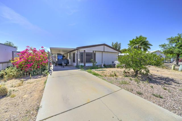 1360 S Lawson Drive, Apache Junction, AZ 85120 (MLS #5936536) :: The Results Group