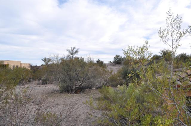 56202 N Vulture Mine Road, Wickenburg, AZ 85390 (MLS #5936583) :: Brett Tanner Home Selling Team