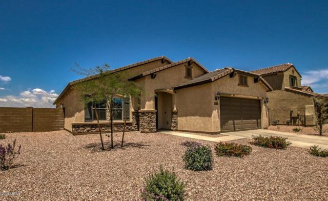 17442 W Blue Sky Drive, Surprise, AZ 85387 (MLS #5936594) :: Nate Martinez Team
