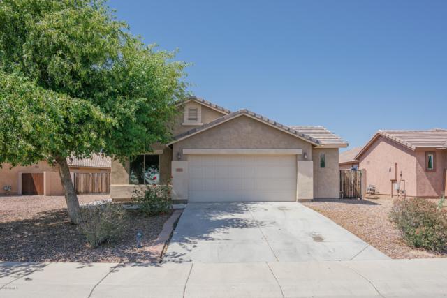 19614 W Morning Glory Street, Buckeye, AZ 85326 (MLS #5936602) :: Occasio Realty