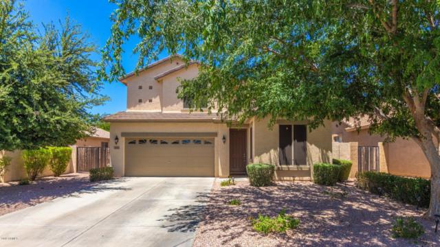 3450 E Arianna Avenue, Gilbert, AZ 85298 (MLS #5936605) :: Revelation Real Estate