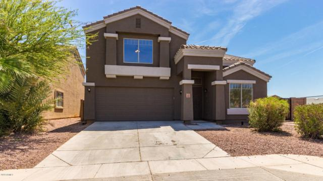4619 N 108TH Drive, Phoenix, AZ 85037 (MLS #5936648) :: Occasio Realty