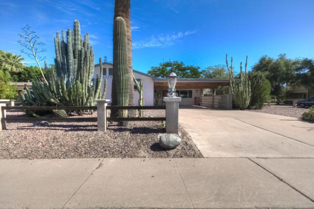 6924 E Earll Drive, Scottsdale, AZ 85251 (MLS #5936677) :: Brett Tanner Home Selling Team