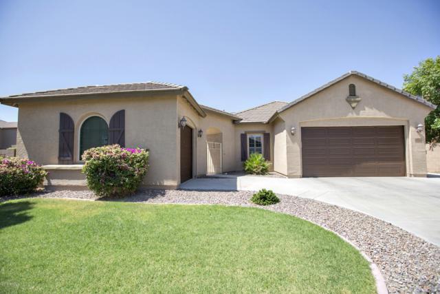 2542 E Lantana Drive, Chandler, AZ 85286 (MLS #5936683) :: The Daniel Montez Real Estate Group