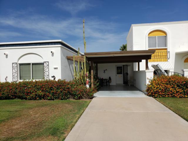 10419 N 106TH Avenue, Sun City, AZ 85351 (MLS #5936702) :: The Bill and Cindy Flowers Team