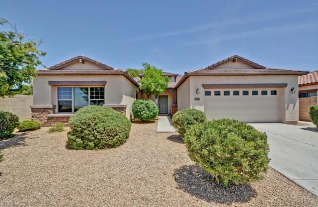 16464 W Hope Drive, Surprise, AZ 85388 (MLS #5936745) :: Yost Realty Group at RE/MAX Casa Grande