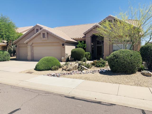 11139 E Blue Sky Drive, Scottsdale, AZ 85262 (MLS #5936759) :: The Pete Dijkstra Team