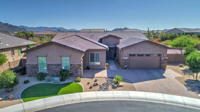 31413 N 58TH Place, Cave Creek, AZ 85331 (MLS #5936774) :: The Kenny Klaus Team
