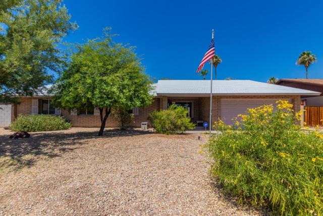 12428 N 46TH Avenue, Glendale, AZ 85304 (MLS #5936844) :: Devor Real Estate Associates