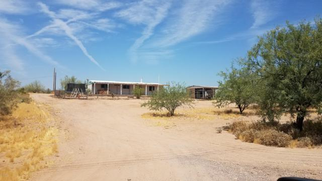 334 S Solana Road, Apache Junction, AZ 85119 (MLS #5936847) :: The Results Group
