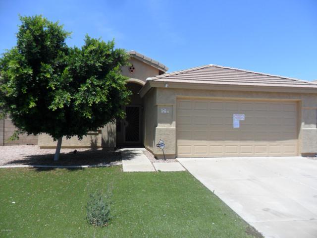 14148 N 134TH Lane, Surprise, AZ 85379 (MLS #5936871) :: Occasio Realty