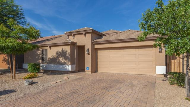 34015 N Slate Creek Drive, San Tan Valley, AZ 85143 (MLS #5936898) :: Revelation Real Estate